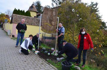 Helfer Pflanzaktion CDU Lörzweiler